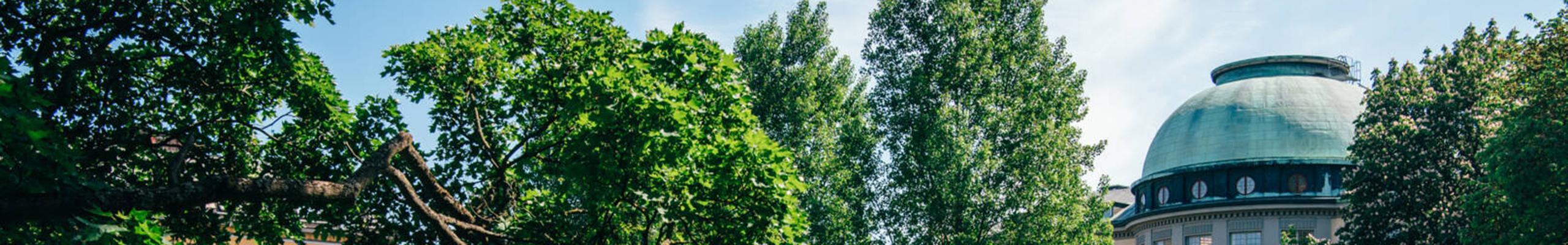 facade_julianawiklund_013_2560x400